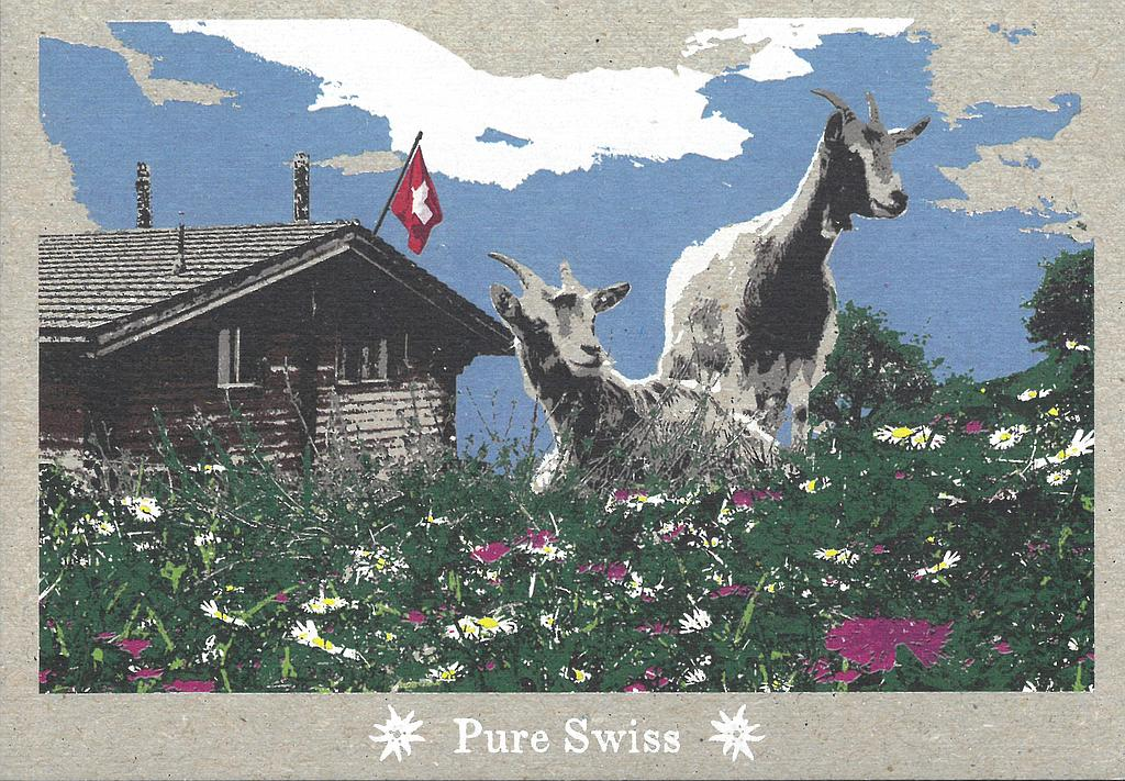 Postcards 51127 Pure Swiss Chévres