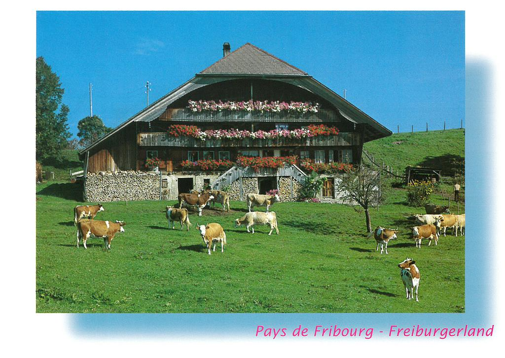 Postcards 04002 Ferme singinoise
