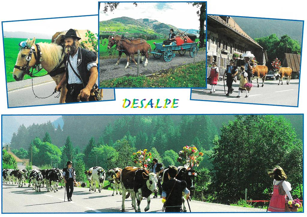 Postcards 00254 Désalpe, tradition fribourgeoise